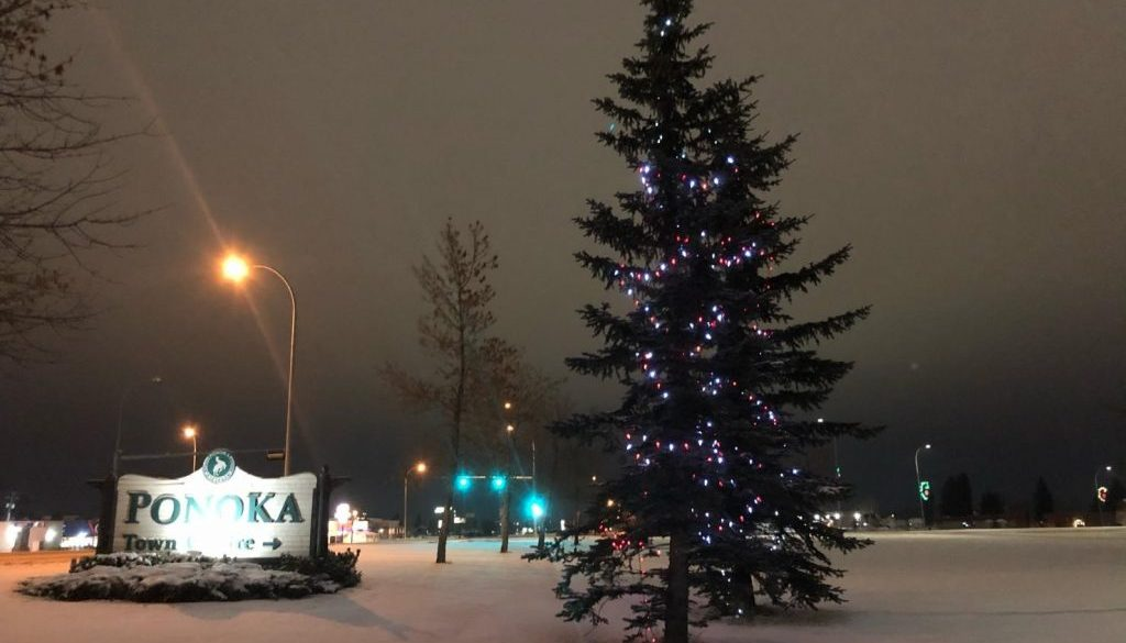 panoka-christmas-lights-2
