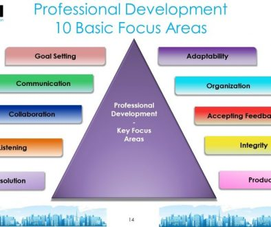 Professional Development Focus Areas