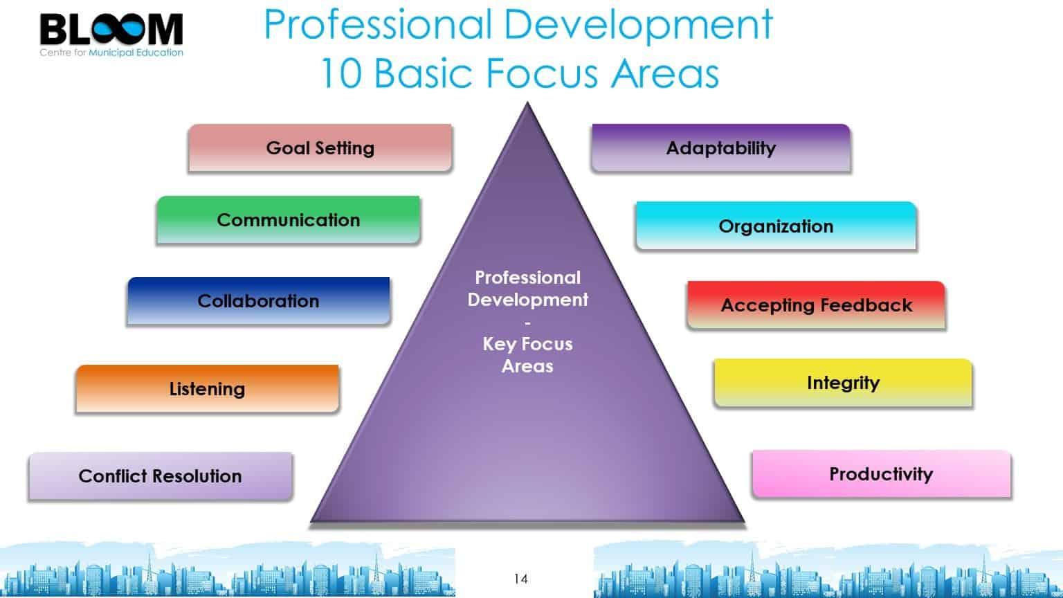 Professional Development Focus Areas