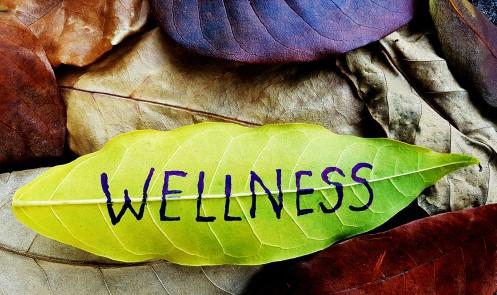 Health and Wellness 2 (2)