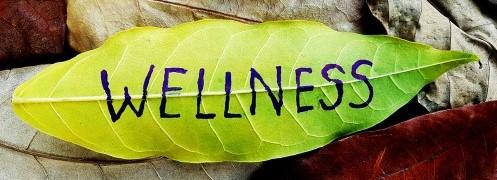 Health and Wellness 2 (3)